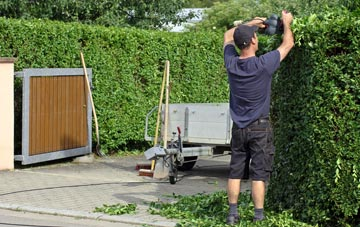 professional Irvine hedge cutting services
