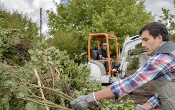 Irvine tree removal costs