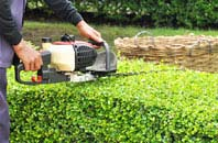 Irvine hedge trimming services