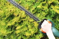 compare hedge trimming costs